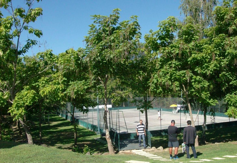 tenis-de-arouca